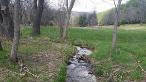 creek near barn jpeg small 3